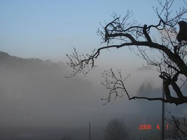 20080401-1.jpg