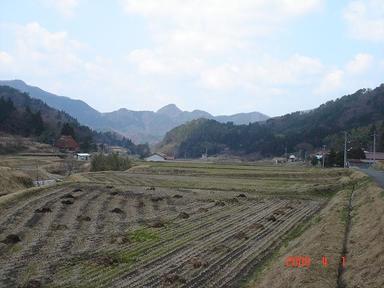20080401-6.jpg