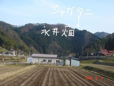 20080405-3.jpg