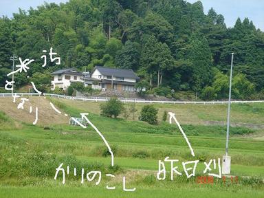 20080711-24.jpg
