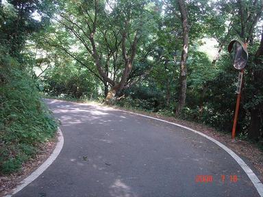 20080718-4.jpg