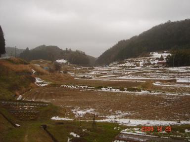 20091226-2.jpg