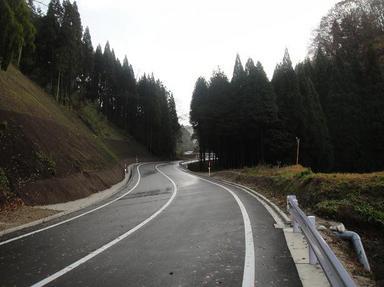 20101203-5.jpg