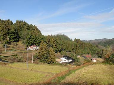 20101210-1.jpg