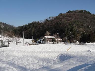 20101219-2.jpg