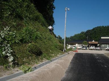 2010718-1.jpg