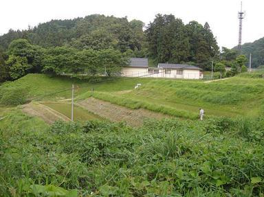 2011606-1.jpg