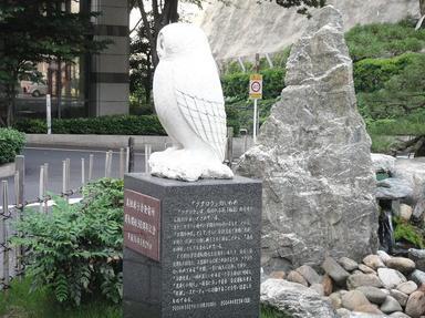 2011608-3.jpg